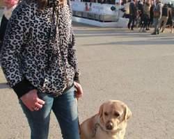 Seikapuce Educateur Canin et C – Miniac - Galerie